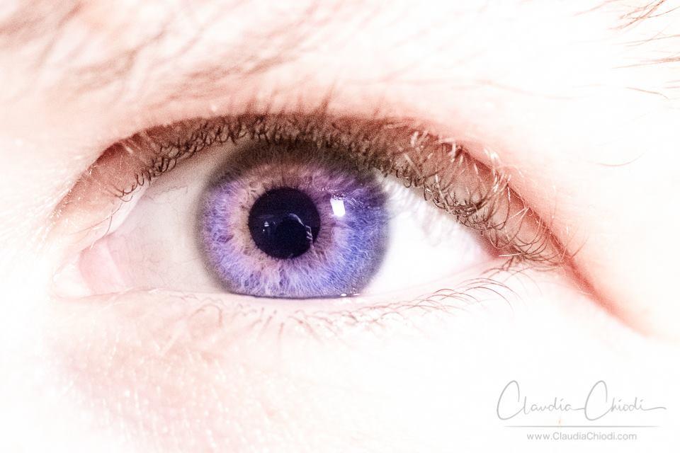 Auge_ClaudiaChiodi
